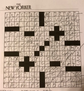 yep kin crossword